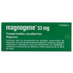 Magnogene 53 Mg 45 Comprimidos